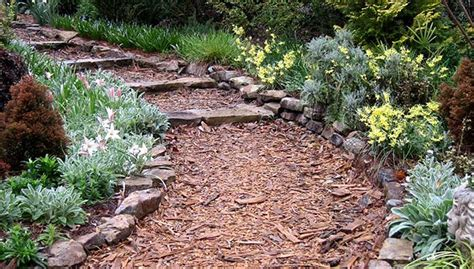 garden walkway ideas southeast gardening planting a walkway