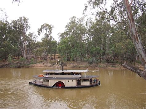 paddle boats canberra 206 best australian riverboats images on pinterest