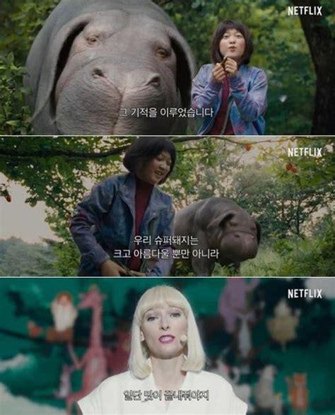 film giant pig giant pig movie okja looks both bonkers and wonderful