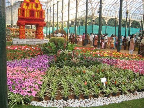 Lalbagh Botanical Garden Annual Flower Show Picture Of Lalbagh Botanical Garden Bengaluru Bangalore Tripadvisor