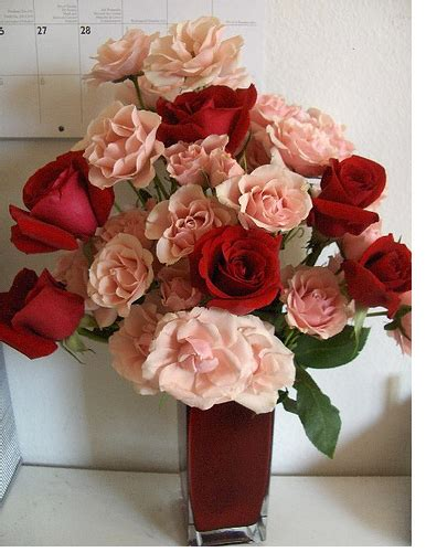 cheap flowers for valentines and cheap flowers image png