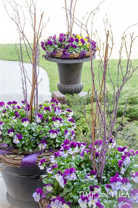Pansy Garden Ideas 25 Best Ideas About Pansy Flower On Pinterest Pansies Violets And Beautiful Flowers