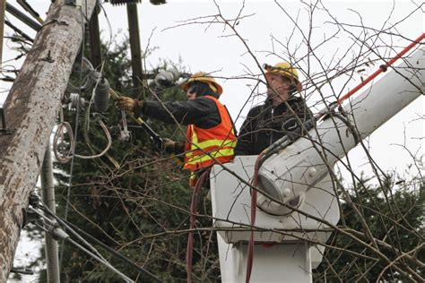 seattle city light customer service number power lines news and updates from seattle city light