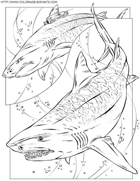 Dessin 195 Colorier Requin Scie Dessin Colorier Requin Scie A Imprimer L