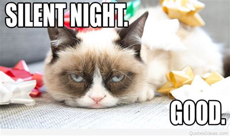 Grumpy Cat Christmas Memes - best funny grumpy cat christmas wishes and sayings 2015