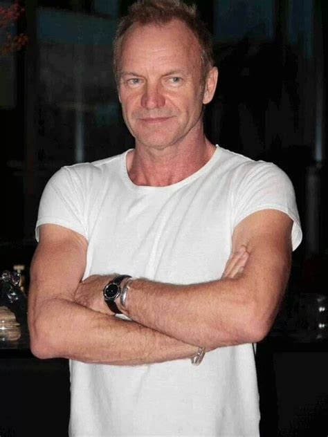 sting has a receding hairline so he tends to wear his hair short 17 best images about sting on pinterest sting musician