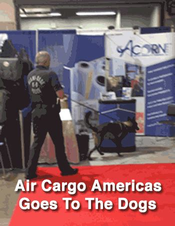 air cargo americas goes to the dogs