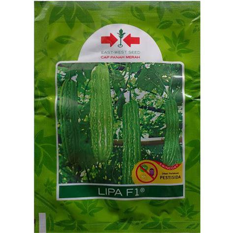 Benih Biji Bunga Dandelion Cocok Untuk Ditanam 1 jual benih paria lipa f1 15 biji murah bibitbunga