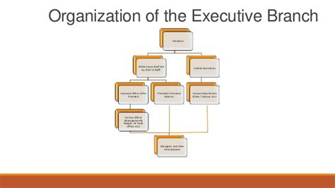Executive Office Of The President Definition by Bureaucracy