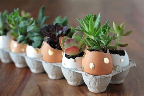 ide kreatif pot bunga  barang bekas  bisa kamu coba