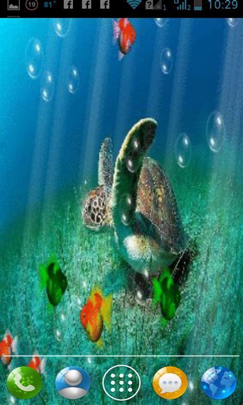sea turtle live wallpaper free sea turtle aquarium live wallpaper free apk android app