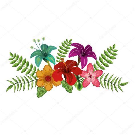 desenho de flores desenho de flores tropicais vetor de stock