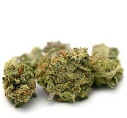 le cannabis qu est ce que c est
