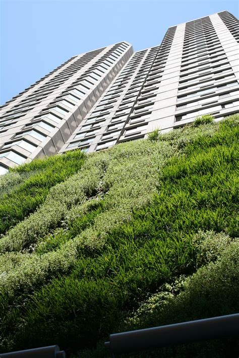 103 best wall vertical gardens images on