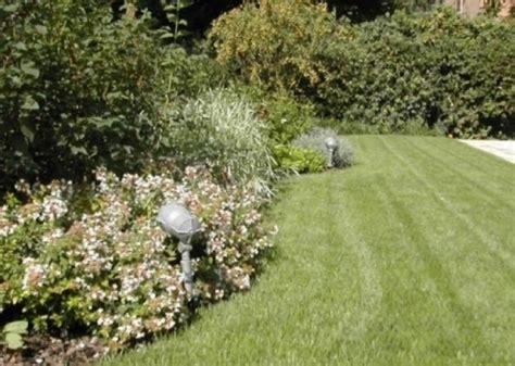 terrazze pensili giardini sospesi realizzazione giardini pensili verde