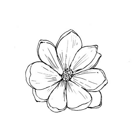 14 best small flower tattoo outline images on pinterest