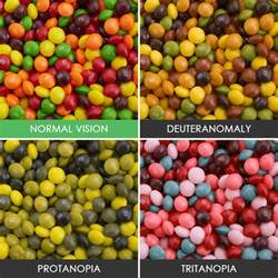color blind types different types color blindness photos 14 whoatastic