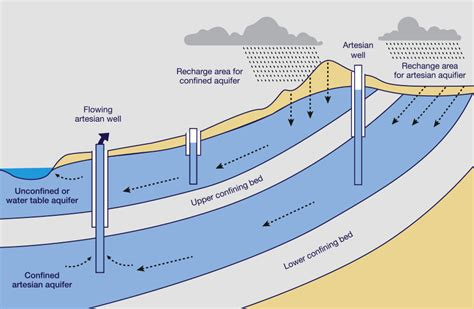 aquifer diagram water diagram aquifer eutrophication diagram elsavadorla