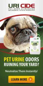 commercial grade odor eliminator commercial odor remover