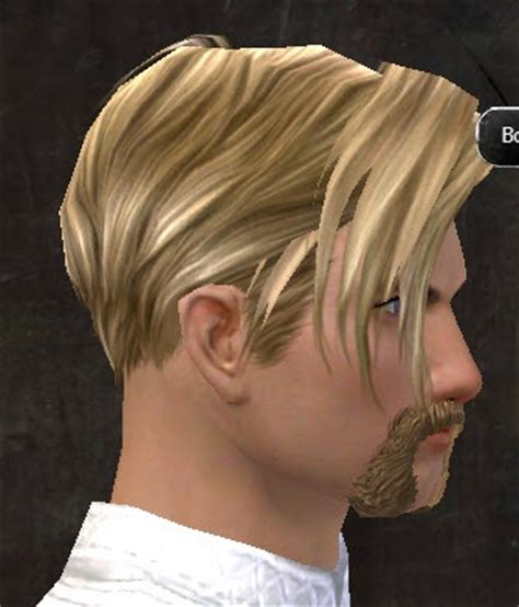 gw2 human hairstyles gw2 new hairstyles in makeover kits dulfy
