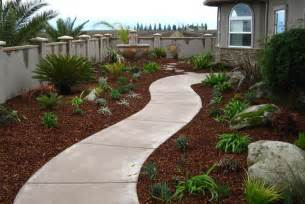 drought landscaping california drought tolerant landscaping cheap drought