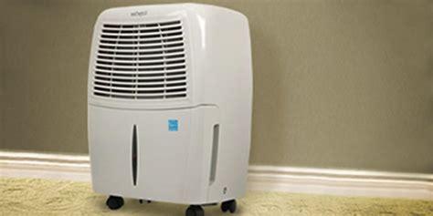 will a dehumidifier kill mold steamer
