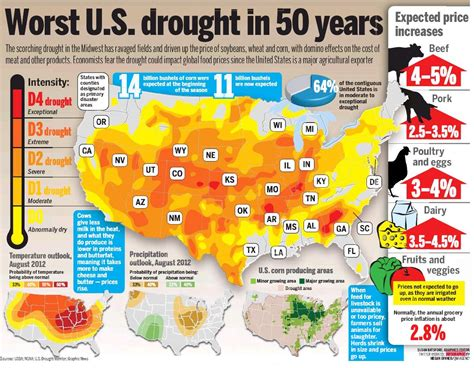 Search For In The Us Infographic The Impact Of The Us Drought Visibly Shaken