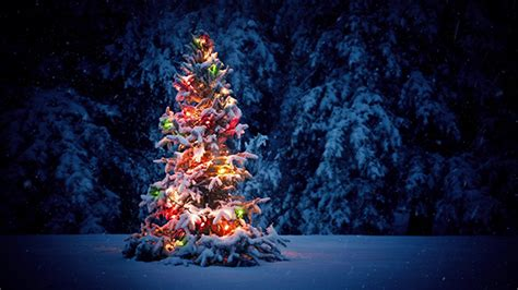 weihnachtsbaum schneit 19 cool background motion templates design freebies