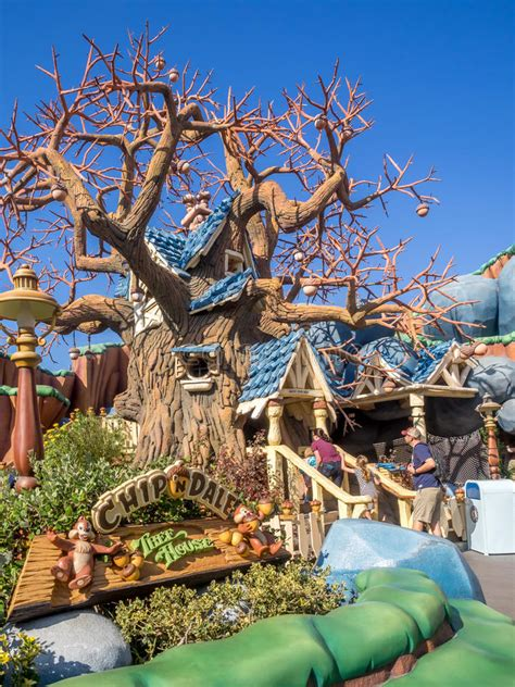sections of disneyland chip and dale s tree house at the toontown section of the