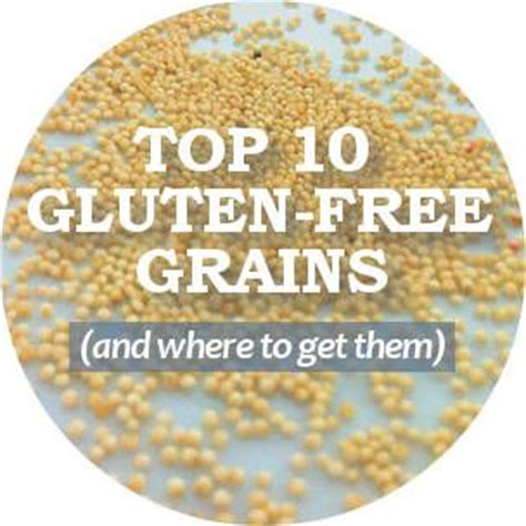 does whole wheat have gluten 10 gluten free grains plant food info pinterest list