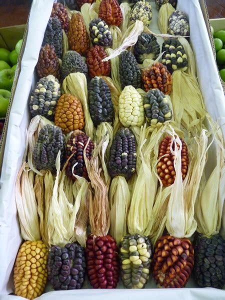 fiori secchi roma mercati di roma