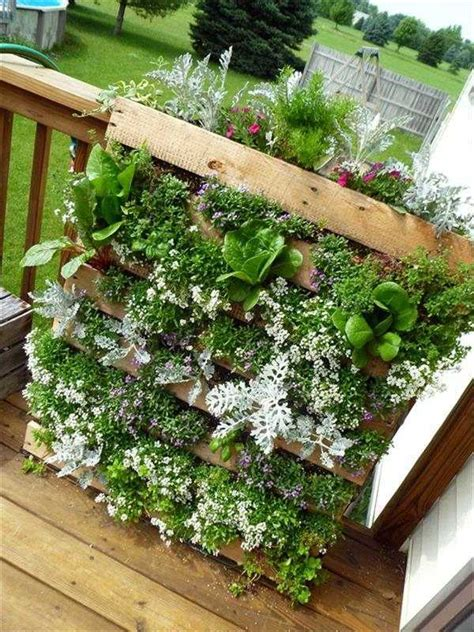 creating a vertical garden and flower diy from