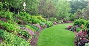 hill landscape ideas do we ever know the challenge of landscaping a hill i dream of our backyard jungle one day