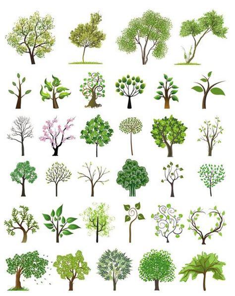 vector tree tutorial best 25 tree illustration ideas on pinterest trees