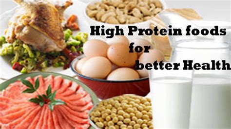 protein high foods foods high in protein list of high protein foods