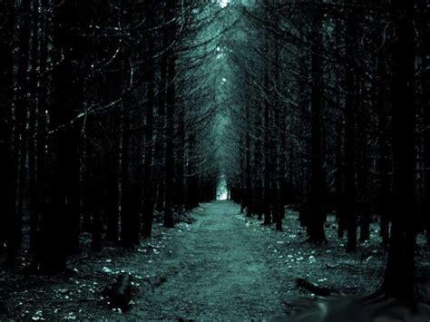 imagenes terrorificas en hd paisajes de bosques tenebrosos buscar con google