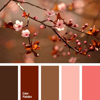 libro dining through the seasons color palette 574 color palette ideas