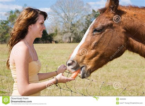 girl with horse head teen girl feeds horse royalty free stock photo image