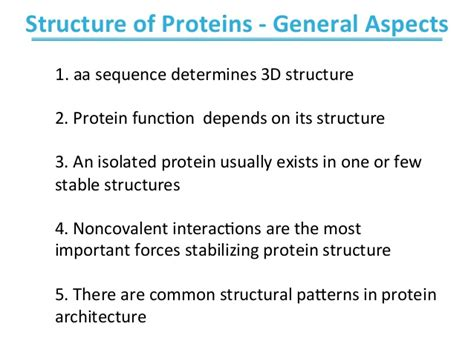 4 protein structure and function biochemistry ch4 protein structure and function