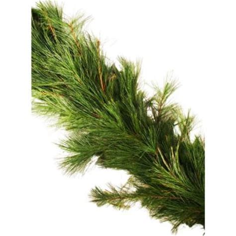 25 ft fresh classic white pine holiday garland