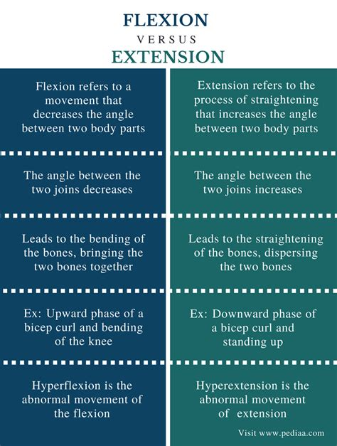 11 Similarities Of And by Difference Between Flexion And Extension Definition