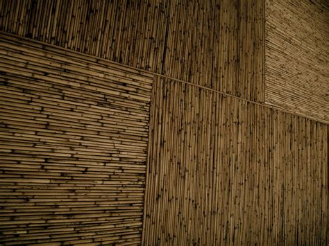 The Bamboo Ceiling by Bamboo Ceiling Related Keywords Suggestions Bamboo