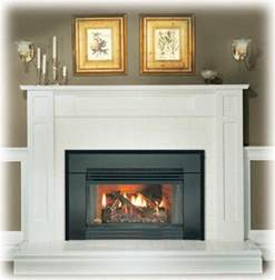 gas fireplace insert ebay