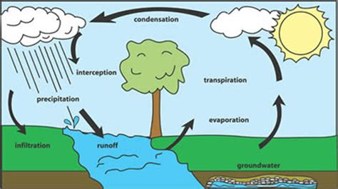simple water cycle diagram water conservation station more more floods