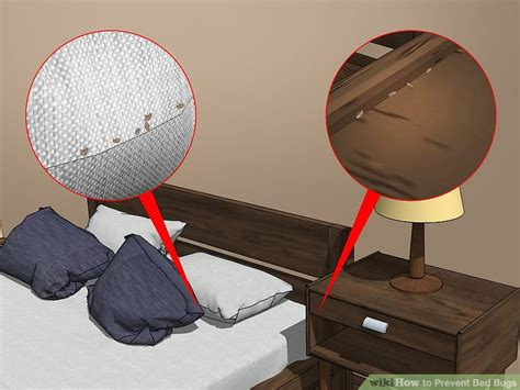 ways  prevent bed bugs wikihow