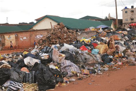 waste disposal environmental expert calls for effective waste management system channels television