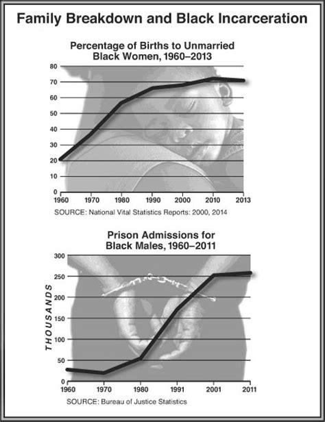 presidents and mass incarceration choices at the top repercussions at the bottom books did mass incarceration destroy the black family