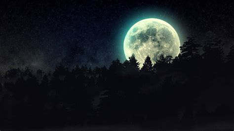 wallpaper abyss earth full moon over pine tree forest full hd wallpaper and