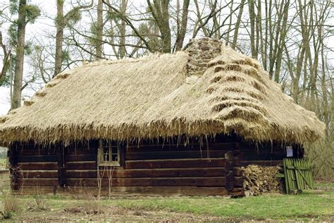 straw thatched roof roof straw thatch roof