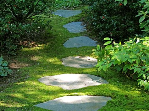backyard garden designs and ideas comfortable backyard design ideas with garden and pool footpath design